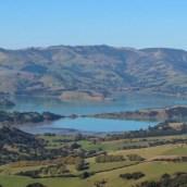 Nouvelle Zélande - Arthur's pass & Akaroa - les lubies de louise (20 sur 46)