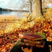 Se sentir bien en automne