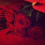 Des jolies roses, ça fait toujours plaisir ♥