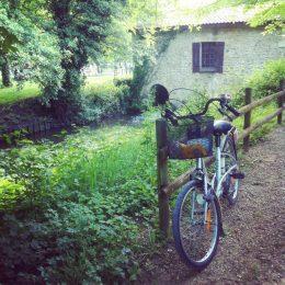 15 km à vélo et des belles découvertes