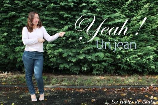 jean 5 poches- Les lubies de louise-titre