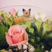 Il y a comme un renard dans mes fleurs