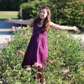 Ma centaurée violette est sur le blog