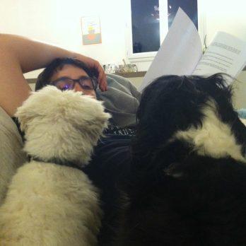 Elles lisent avec leur maître, c'est chou ♥