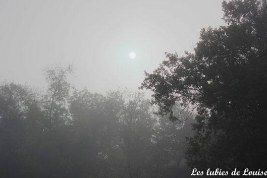 gilet-philemon-dans-la-brume-les-lubies-de-louise-36