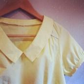 Airelle jaune