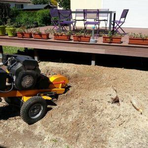 jardinier rouen rognage souche