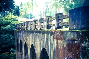 Coorg-3