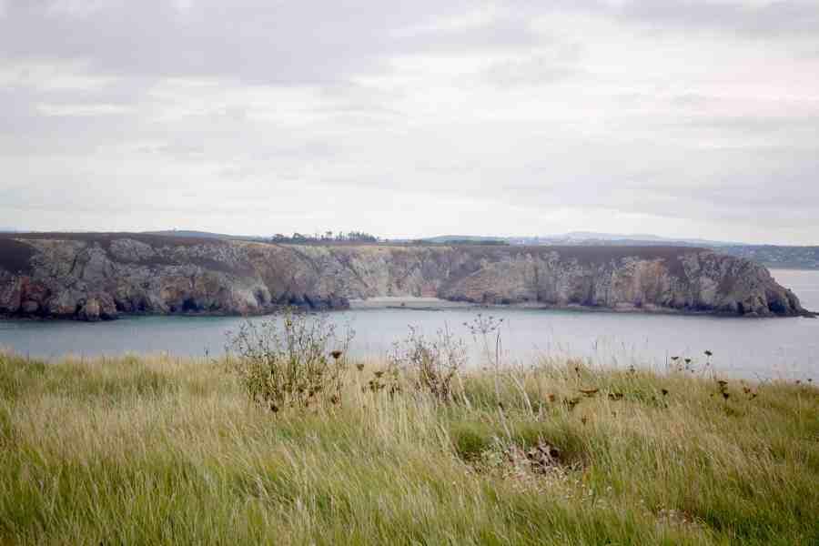 Paysage nature de rochers mer et flore en bretagne
