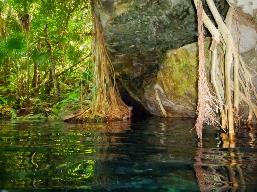 Plongée dans un cenote au Mexique