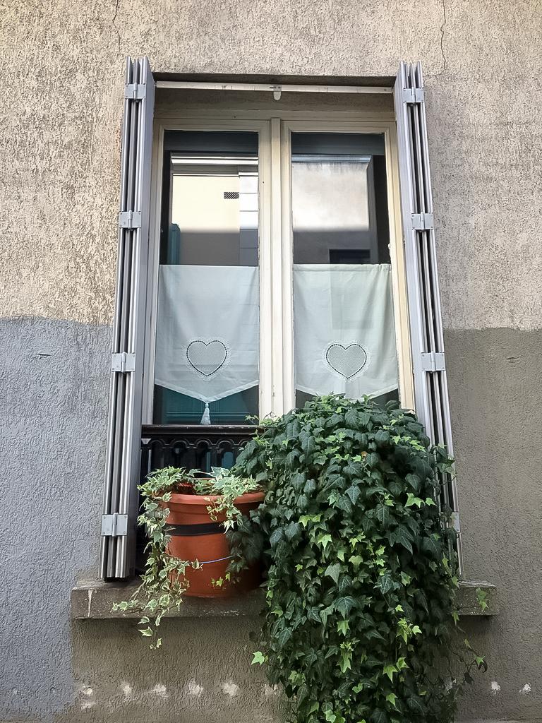 ruelle-paris-verdure-fenetre-rideaux-thermopyles-coeur