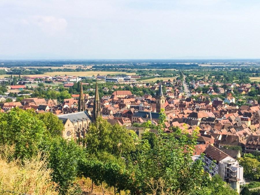 route des vins-alsace-france-obernai-vue panoramique-ville