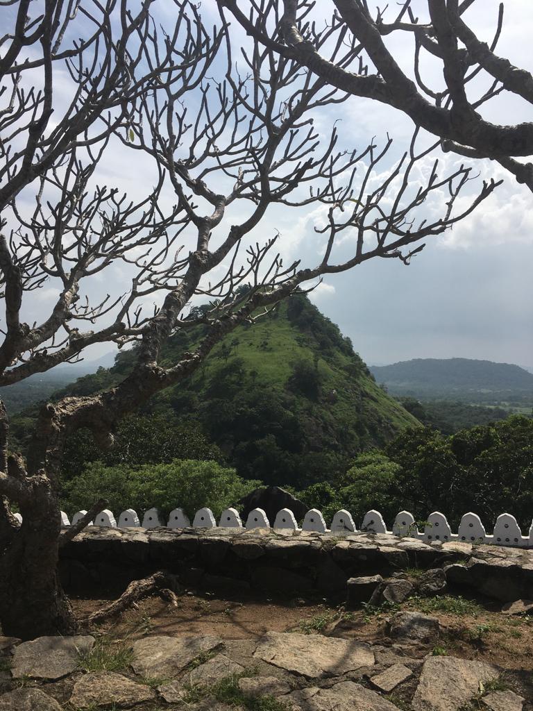 Au sommet des grottes de Dambulla au Sri Lanka