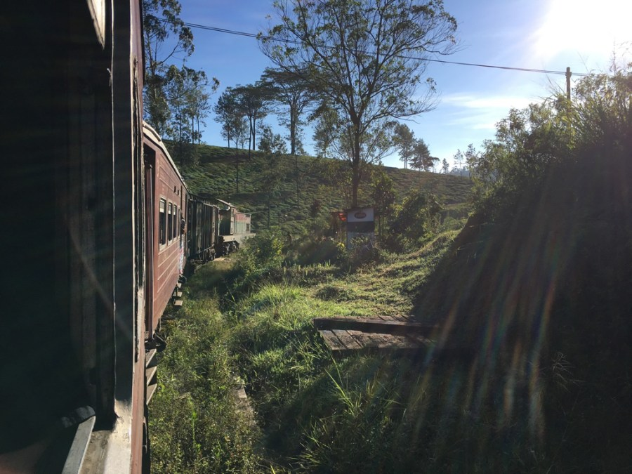 Paysage à bord du train pour Ella