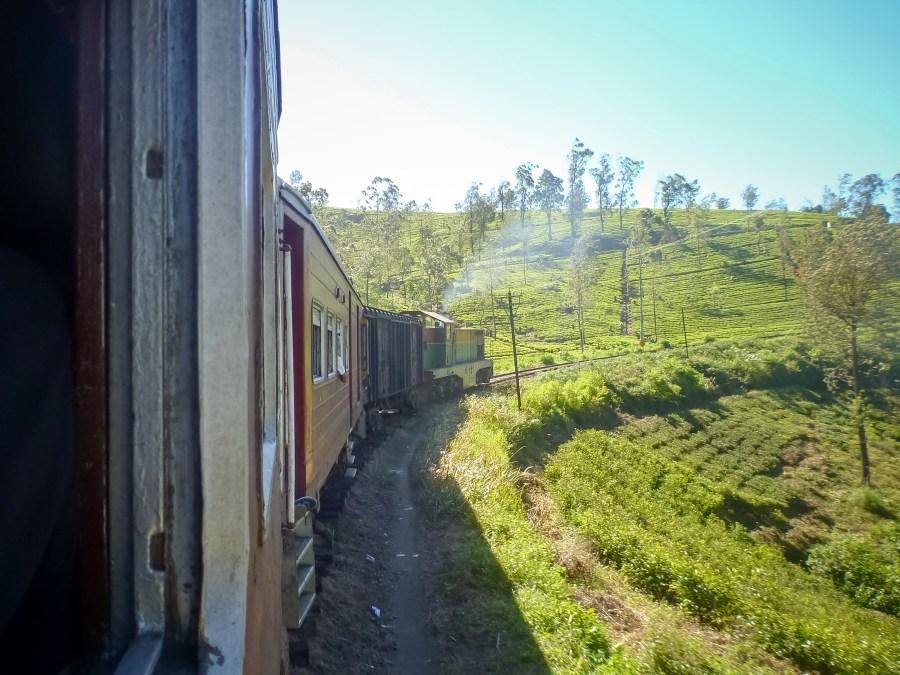 Les virages du train avec vue sur les plantations de thé
