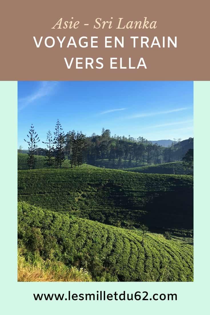 Un voyage en train au Sri Lanka vers Ella