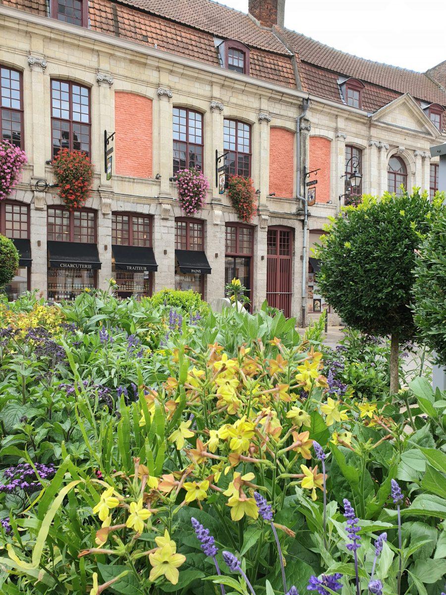 Façades de maisons dans Douai