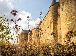 Le château fort de Sedan le plus grand d'Europe