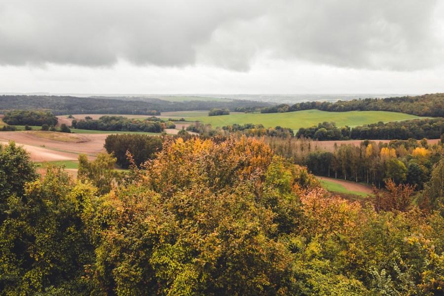 Le paysage arboré de l'Aisne