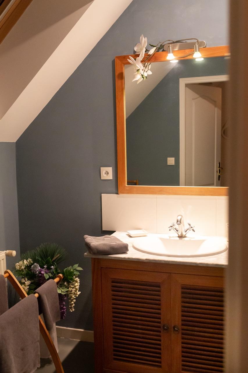 Salle de bain de l'herbe bleue