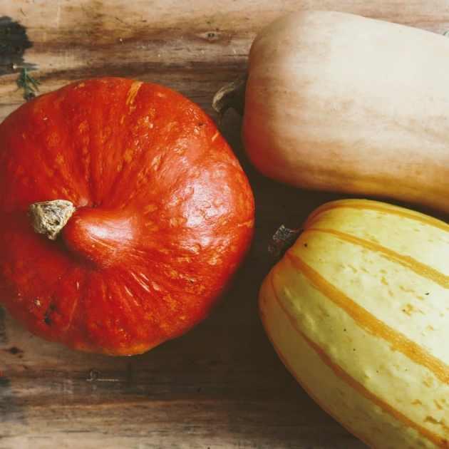 courges dans un panier de fruits et légumes grenoblois