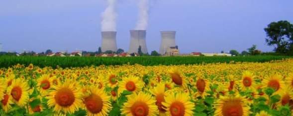 Centrale_nucléaire_du_Bugey_et_champ_de_tournesol