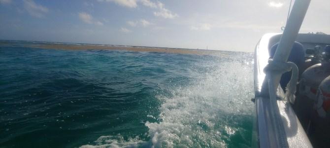 Mexique – Yucatan – Jour 10 plongée à Mahahual
