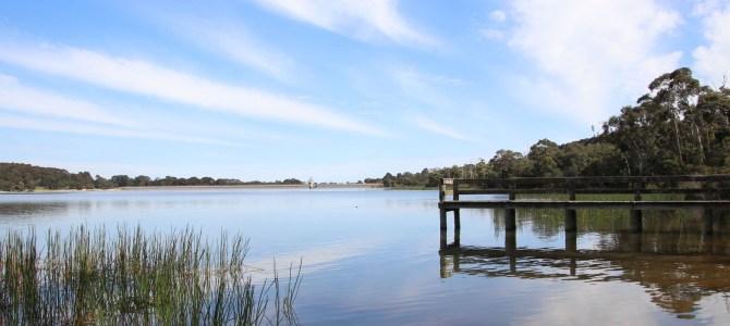 Australie – Victoria – Lysterfield Park