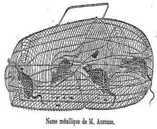 Nasse métallique de M Aurouze