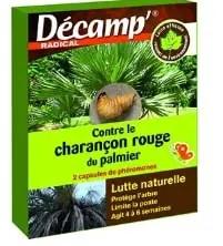 Decamp: un produit contre le charançon rouge du palmier
