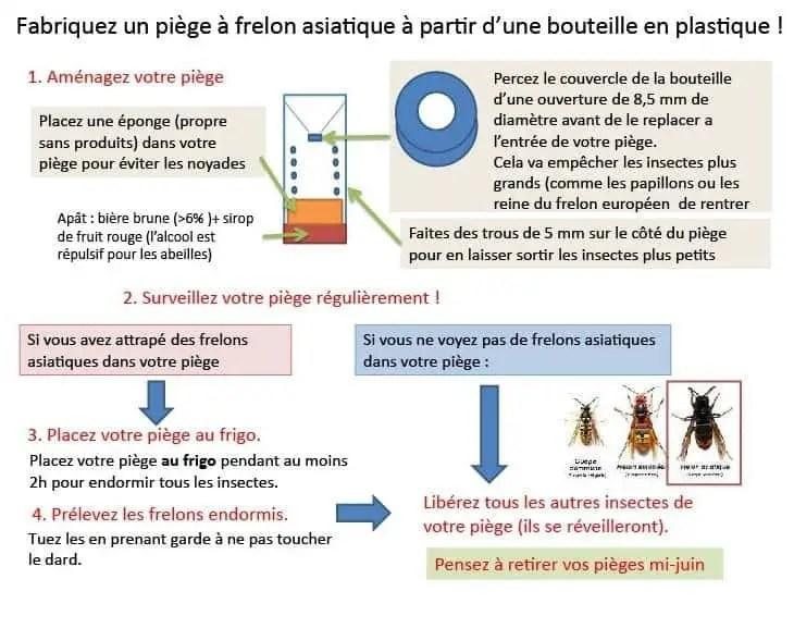 comment fabriquer un piège des frelons asiatiques en France