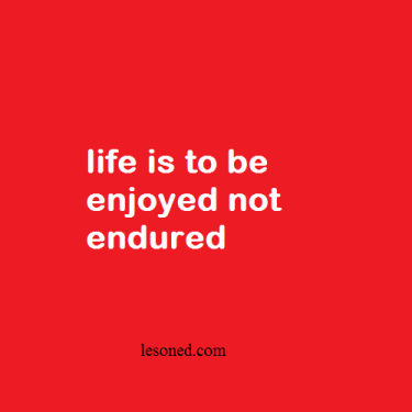 life is to be enjoyed not endured
