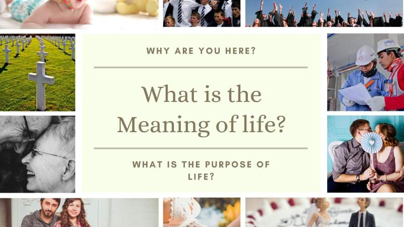 What is the Meaning of Life? What is Your Purpose in Life?