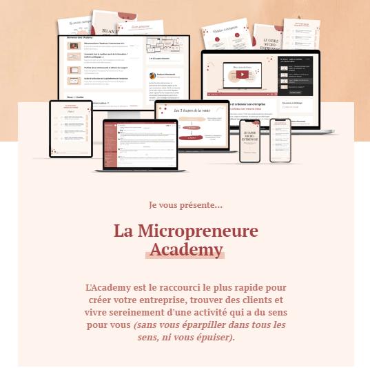 micropreneure academy