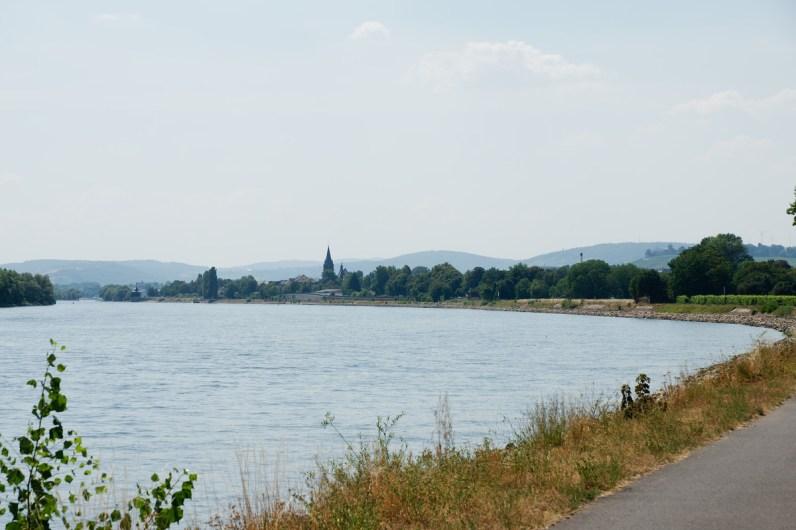 Le Rhin, large