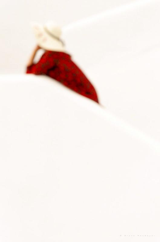 Bruno Houdayer Red Souvenir 3