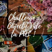 Challenge littéraire : Objectif Vide Ta PAL #9