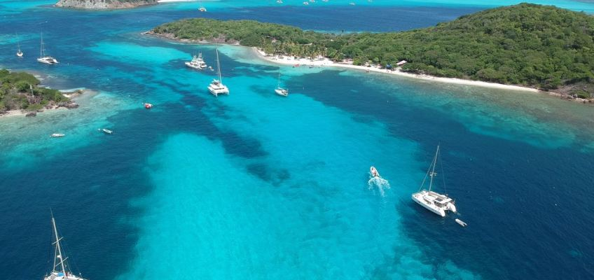 Tobago Cays et Horseshoe Reef