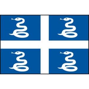 drapeau-martinique avec le serpent la couresse de Martinique