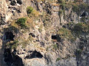 Excavation sur le Rocher du Diamant