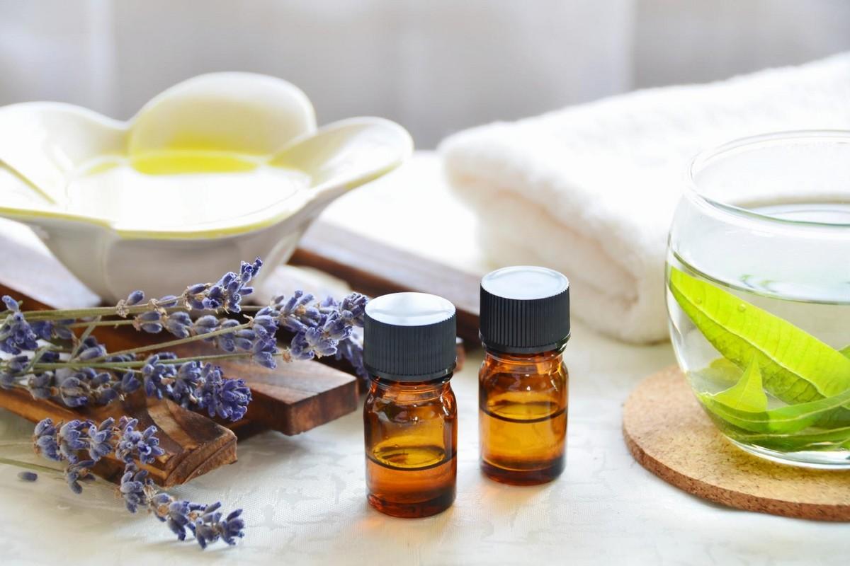 Comment loigner les insectes avec les huiles essentielles - Repulsif fourmi huile essentielle ...