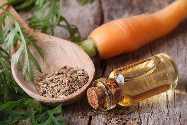 Carotte huile essentielle beauté