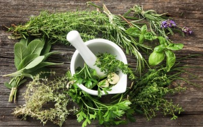 4 soins de beauté naturels avec les plantes du jardin 🌿