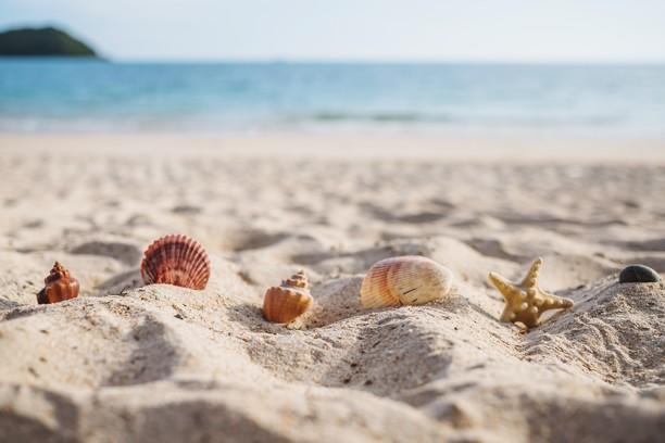 Mes conseils beauté pour un été au naturel
