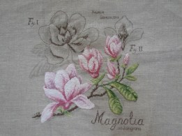 Magnolias for ever !