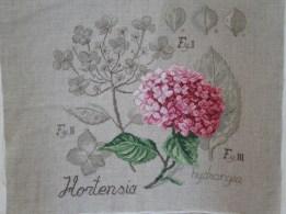 Les Hortensias, criants de naturel !