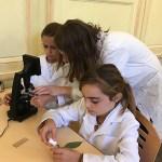 les enfants observent au microscope et préparent des lamelles