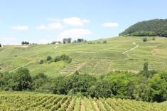 Château-Chalon Jura