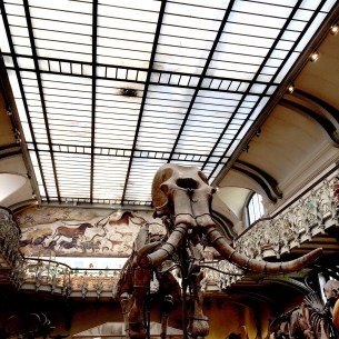 Museum_Paris_4