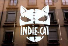 Indie_Cat_8